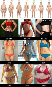 bodyfat chart